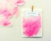 wedding confetti bags, 20 glassine bags with pink paper petals, miniature peg