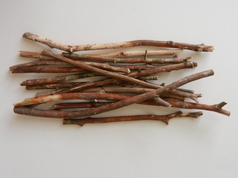 Bare wood branches 11 17 inches tall natural rustic - Branche en bois decorative ...