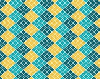 Indie Chic Checkers Multi by My Minds Eye Riley Blake Designs, 1/2 yard