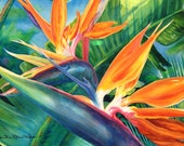 Original Large Tropical Flower Watercolor Art, Painting Professionally framed Birds of Paradise Tropical Flowers art Artist Christie Elder