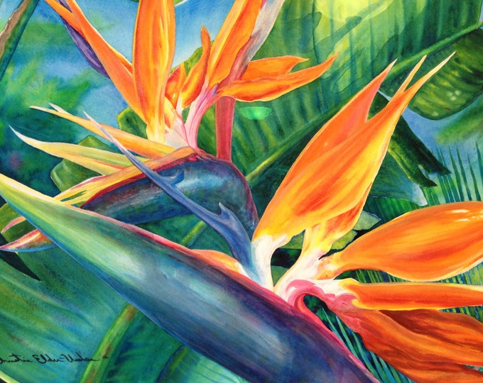 ORIGINAL Large Framed Hawaiian Bird of Paradise Watercolor Art, Painting, Tropical Flowers, Island, Beach Decor Art by Artist Christie Marie
