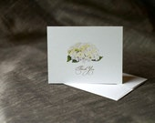 Thank you Notes - Note cards - White hydrangea - Wedding - Event - Paper goods
