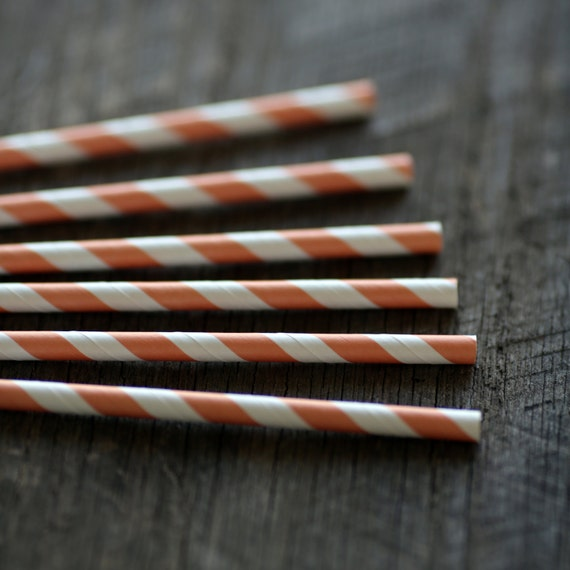 Sweet Peach- Paper Straws- Set of 12