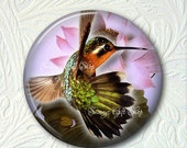 Hummingbird Pocket Mirror 2.25 Inch Black Velour Pouch   Buy 3 get 1 Free  311-S
