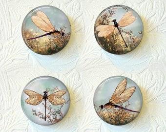 "Dragonfly Magnets, 1.5"" in Size, Set of 4 Magnets, Buy 3 Sets Get 1 Set Free  179M"