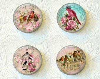Bird Magnet Set of 4  Buy 3 Get 1 Free  221M