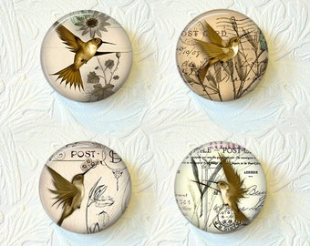 Magnet Set Hummingbirds Buy 3 Get 1 Free  217M