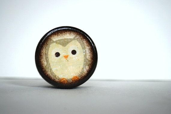 Little Gray Owl Powder Box