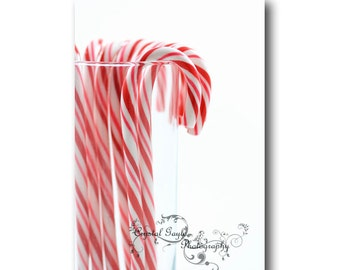 Red Striped Candy Cane Fine Art Photography Print red white Christmas holiday home decor wall art
