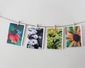 SALE Cards Nature Flowers - Set of 4 Photo Cards - Garden Macro - Bunny, Bee, Orange, Yellow, Green - Easter - Rabbit - Botanical -Gift Idea