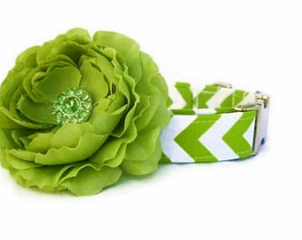 Lime Green Chevron Dog Collar with Nickel Plate Hardware and Lime Green Flower Accessory