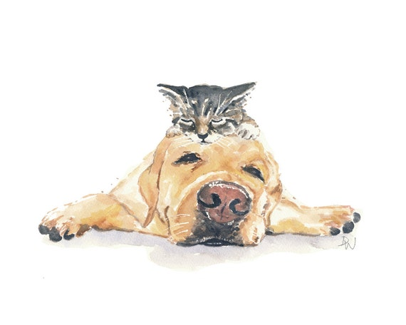 dog kitten watercolor painting tabby cat yellow lab