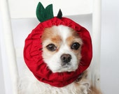 Red Apple Dog Snood - Stay-Put 3 Rows Elastic Thread - Specialty Dog snood - Cavalier or Cocker long ear covering