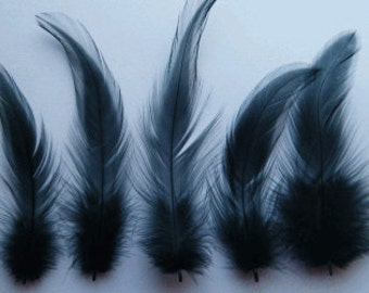 Black rooster hackle feathers, craft supplies, DIY, bridal wedding hair clips, hair extensions