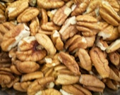 1 Pound Bag of Mineral Wells Texas Pecan Pieces Freshly Picked and Shelled This Year's Crop Packed in Freezer Bag