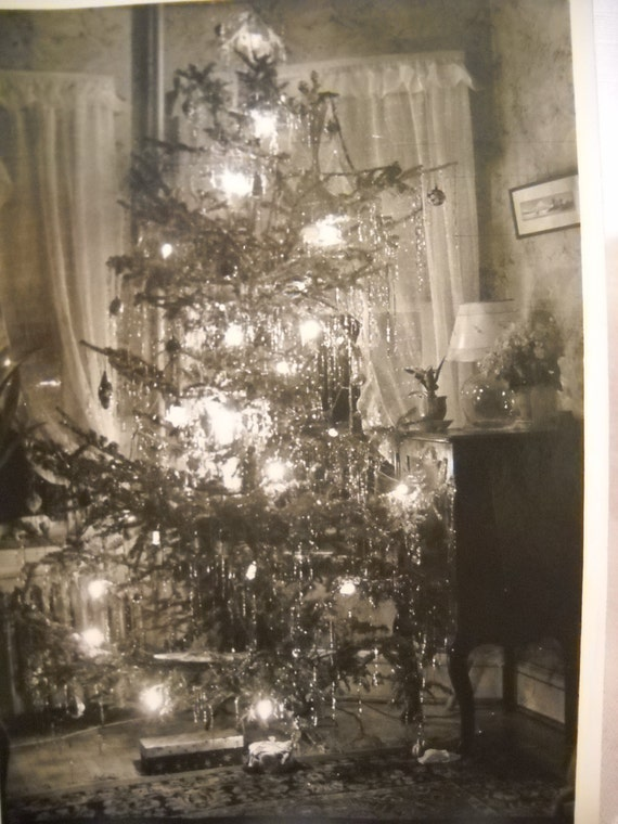 Christmas Photo c1940s Christmas Tree