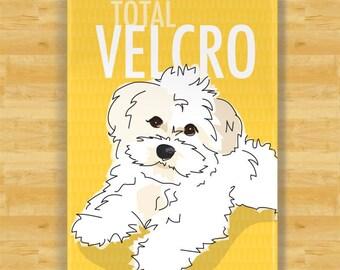 Havanese Magnet - Total Velcro - White Havanese Gifts Fridge Dog Refrigerator Magnets