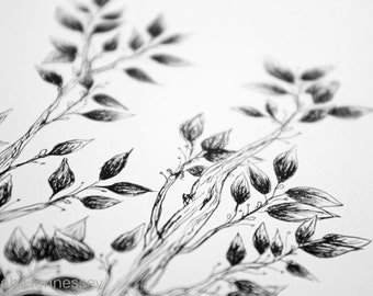 Tree Illustration - Original Ink Pen Drawing of Black and White Tree with Branches and Leaves - Archival Ink 8x10 Drawing