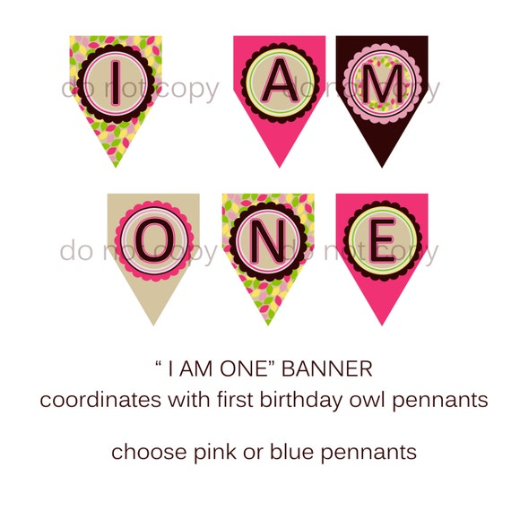 First Birthday Banner Coordinates With Owl Birthday ' I