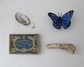 Antique Pin Box, Specimen Pins, Natural History Decor Curiosity
