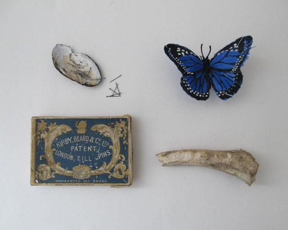 Antique Pin Box, Specimen Pins, Natural History Decor Curiosity