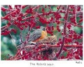 The Robin's Wait Photo Story Card