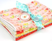 Set of 5 Burp Cloths- in Riley Blake The Sweetest Thing Birds Floral Red Yellow Green Blue