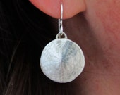 SAND DOLLAR EARRINGS  (small)