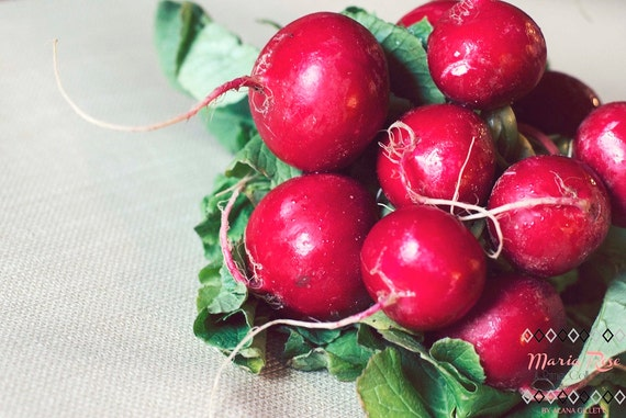 Radishes- Fine Art Photography by Alana Gillett- 5x7 print- Ruby Red Radishes Roots Leaves Food Kitchen Decor Wall Art Home Decor