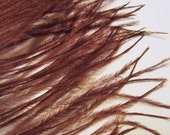 OSTRICH Plume Brown ostd-21 craft feathers Reduced Price