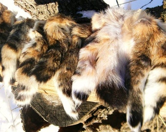Bobcat Tail : Top Quality for Fly Tying, Craft, Totem, Ceremony