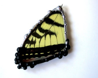 Real Butterfly Wing Pendant, Eastern Tiger Swallowtail