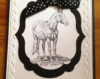 Any occasion horse card