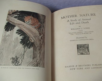 Antique 1920's Mother Nature A Study of Life and Death, 1923, first edition book, color illustrations, wild animals tigers bears birds fox