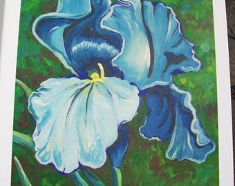 Blue Iris - notecard