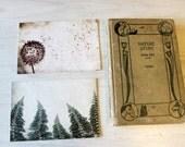 Postcard Set - Natural History, set of 8 postcards