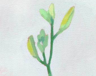 "flower still life - giclee print - ""Daylily 2"""