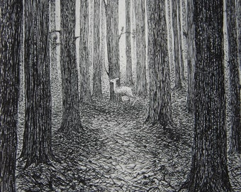 A forest, etching by Flora McLachlan, deer alone in a dark forest, tall pine trees