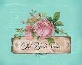 banner shop etsy Roses pink aqua banner old French writing six piece shop front etsy design