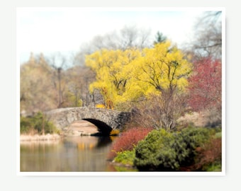 New York Print, Central Park, NYC, New York City Photo,  spring landscape, the pond central park, bridge, spring in NYC, new york city