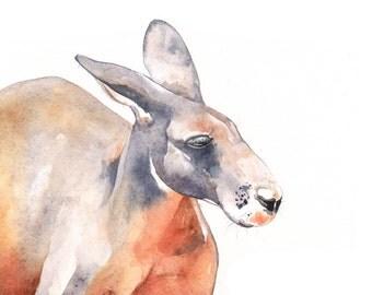 Kangaroo painting- K089 print of Watercolor Painting A4 print