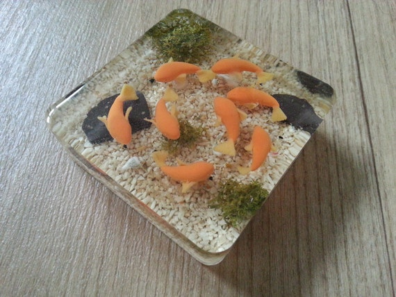 Lots a fish goldfish pond square paperweight by deeraaarts for Square fish pond