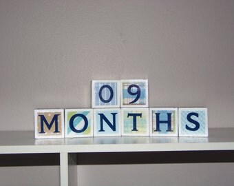 Milestone Baby/Maternity Month/Week Blocks - blue set of 8 blocks