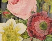 FLOWER BOUQUET Pierre-Joseph Redoute VINTAGE Flower Garden Art- Printable Download Collage Paper Crafts Card Decoupage  No. 8