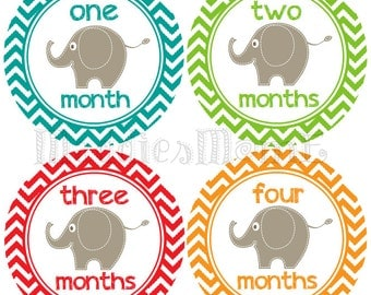 Monthly Baby Boy Stickers Baby Month Stickers, Monthly Bodysuit Sticker, Monthly Stickers Chevron Elephants (Eli)