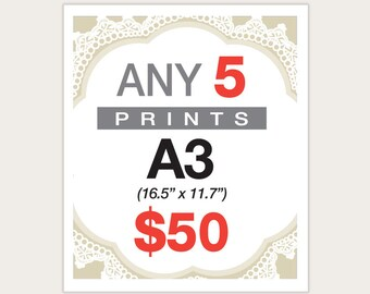 5 Posters for 50 Dollars -  A3 Size
