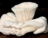 Brain Coral Sculpture - OBO - one of a kind, fish tank - decoration -  aquarium, interior yacht design - unique art