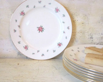 Vintage Dinnerware Floral China Plates Pink Green Roses  Dessert Bread and Butter Plates Small Rambler Rose Nautilus Eggshell Serving Plates