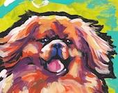 "Tibetan Spaniel portrait  print of pop dog art painting bright colors 13x19"" giclee print"