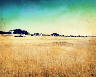 Mendocino Photography, Retro Photography, Gold Fields, Northern California, Rustic, Gold Teal